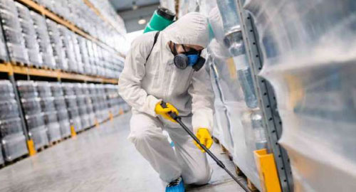 Exterminator working on a business premises