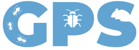 Cheap Pest Prevention Services Galway